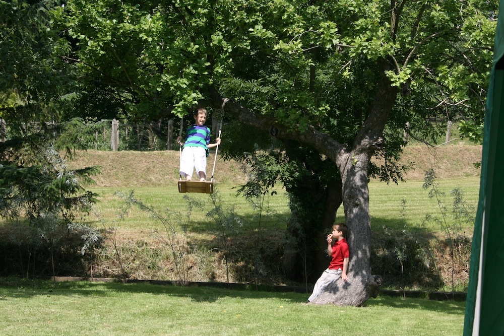 Swinging in the old apple tree