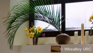 daffoldils-and-palm-leaves